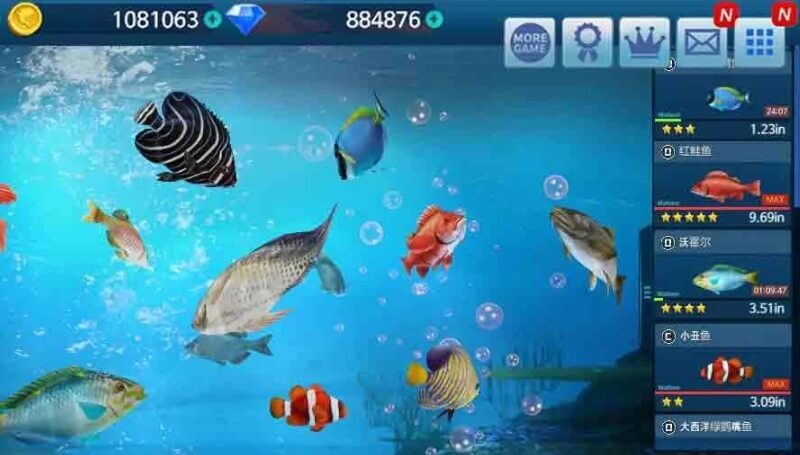 Fishing Championship мод