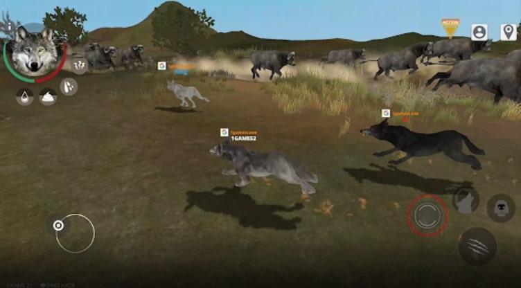 Wolf Online 2 коды